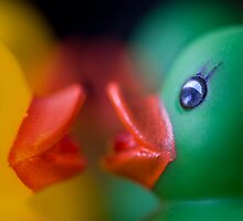 Ducky's Kiss by nancynootje