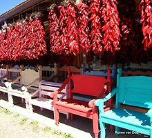 Hot seats by Ronee van Deemter