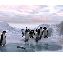 Antarctic Dawn Photographic Print