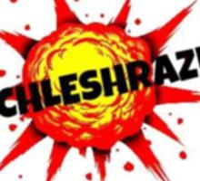 SchleshRaz Boomsauce Logo Sticker