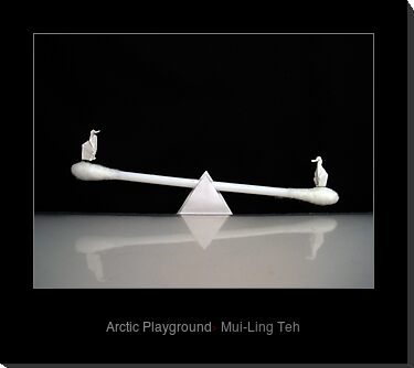 """Arctic Playground"" by Mui-Ling Teh"