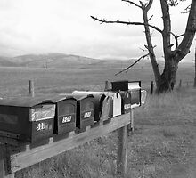 mailboxes by Annie Wood