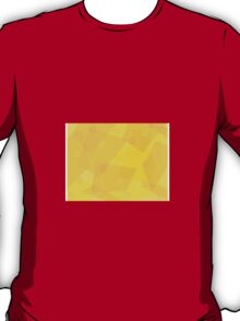 Sunny See-though Paper T-Shirt