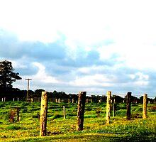 Fenceposts by ReillyJo