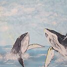 Houp Back whales by cdcantrell