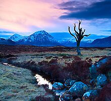 Winter Sunset, Rannoch Moor, Highlands, Scotland by fineartphotos