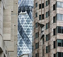 Sneak Peek - The Gherkin by Amanda White