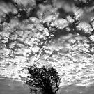 Beachy Head skyscape by mikebov