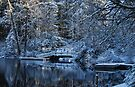 Winter Lake Reflections by Tori Snow