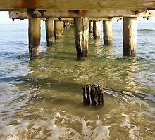 Under the Frankston pier by Allison Sheenan