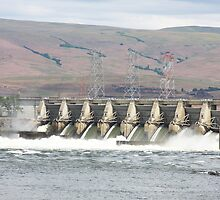 The Dalles Dam by Julia Washburn
