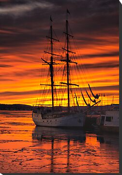 Sunset Silhouette - Oslo Harbour by Matthew Walters
