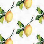 Branch of  lemons with leaves by OlgaBerlet