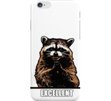 Evil Raccoon iPhone Case/Skin