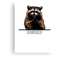 Evil Raccoon Canvas Print