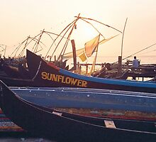 Fort Cochin Fishing Nets by Gavri