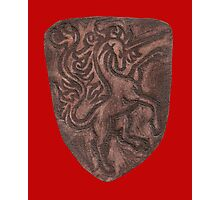Red Leather Unicorn Shield Photographic Print