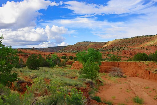 Vivid New Mexico by JBoyer