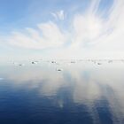 Sea reflections by Phemie
