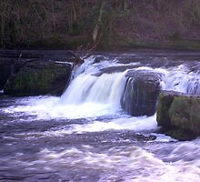 Aysgarth Falls #2 by Trevor Kersley