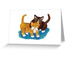 Tussle between Two Kittens Greeting Card