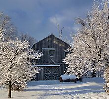 Winter Wonderland by Katie Clark