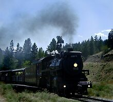 Kettle Valley Train by DragonflyPrints