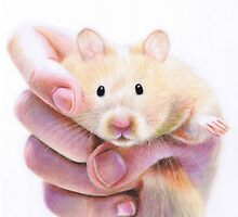 Hamster Hug by Karen  Hull