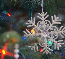 Stary Snow Flake. by Holly Schimpf