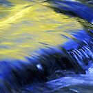 Water in Motion by Brian Hendricks