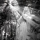 Our Lady of the Woods Card by Johanne Brunet