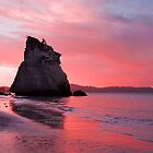 Cathedral Cove by Tristan Rayner