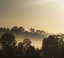 Winter Morning Mist by Jenelle  Irvine