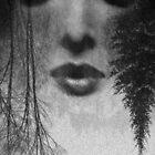 mist by Loui  Jover