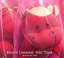 "Happy Chinese Niu Year: Wishing you ""Dragon horse sperm God"" by richardseah"
