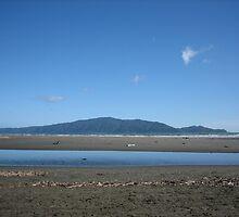 Kapiti Island, New Zealand   by SamanthaT