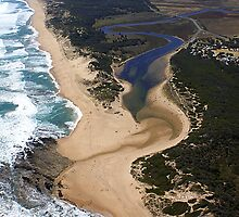 Mouth of Powlett River by Rosie Appleton