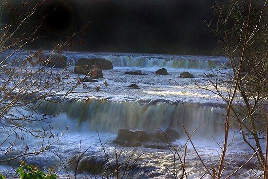 Aysgarth Falls #5 by Trevor Kersley