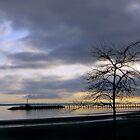 White Rock Pier by DragonflyPrints