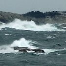 Rock-Bound Coast (2) by George Cousins