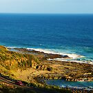Great Ocean Road by Alicia  Liliana