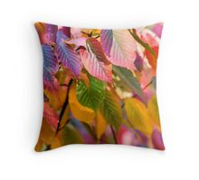 multicolored autumn leaves Throw Pillow