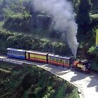 Train on the Darjeeling Railway, India by Peter Stephenson
