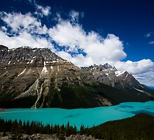 Peyto Lake by Sander van der Veen