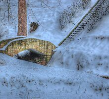 Ritter Cobblestone Bridge by Jason Vickers