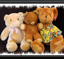 The Three Teddies by Donna Adamski