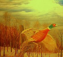 Long Tail Pheasant  by KenLePoidevin
