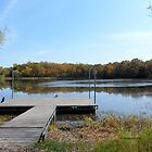 Autumn Landscape at the dock - my favorite spot to catch frogs. by Barberelli