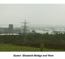 Queen Elizabeth Bridge And View by davesphotographics