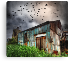 Dark Flight Canvas Print